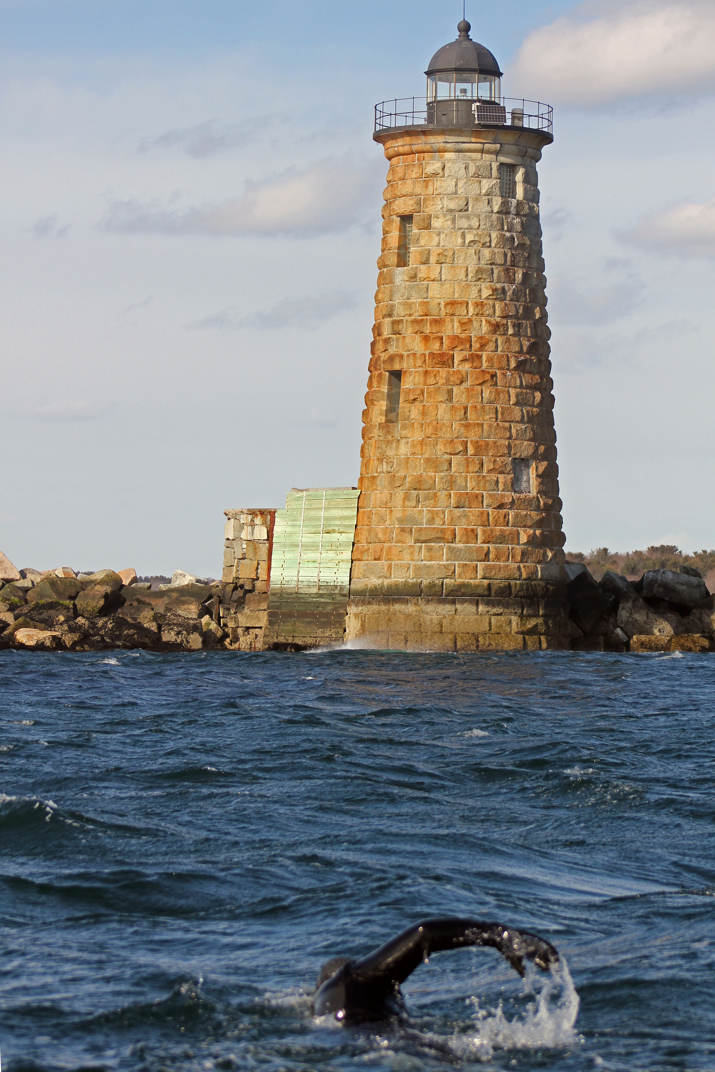 Swim to save Whaleback Lighthouse Kittery Maine